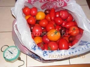 помидоры мытые для кетчупа