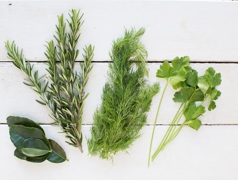 ароматные травы из огорода