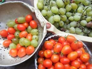 мелкие помидоры и виноград