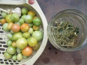 зеленые помидоры для засолки